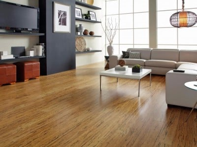 Laminate Flooring Better Than Carpets